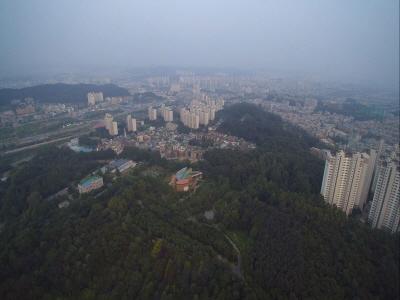 경기도 대표 도시숲 '물향기수목원' 미세먼지 저감 효과 탁월해